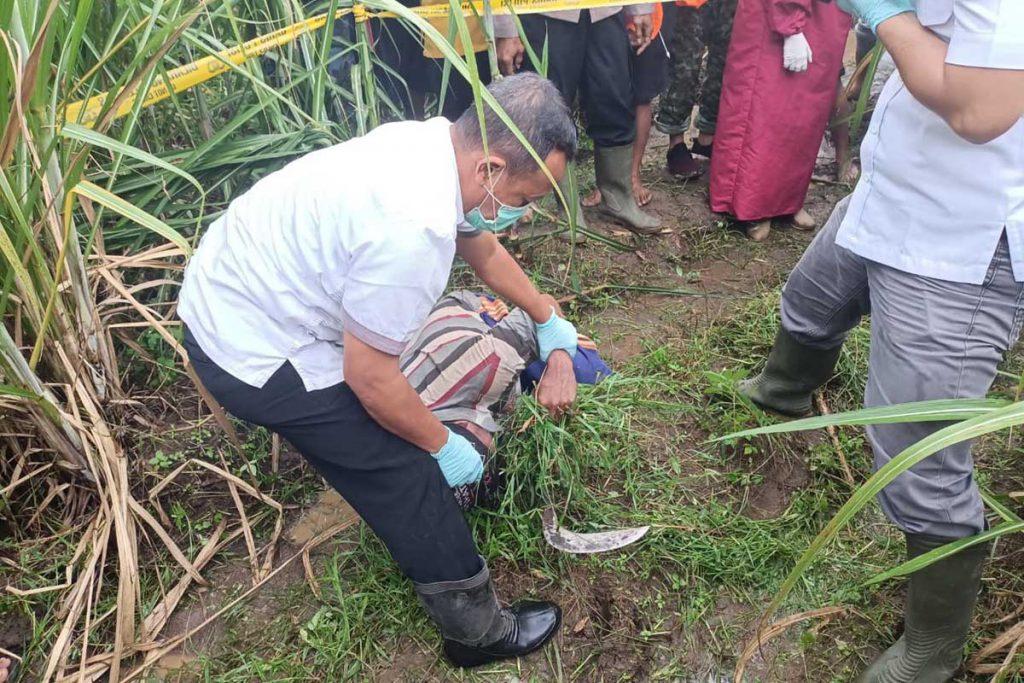 Kondisi korban saat ditemukan di kebun - Pamit Cari Rumput Meninggal di Kebun